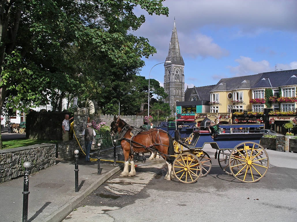Jaunting Car in Killarney