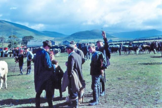Dingle Fair August 1968